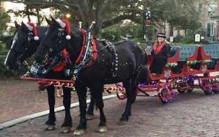 Morning and evening Christmas parades planned this weekend